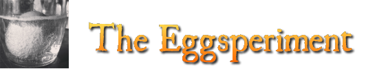 Eggsperiments Result, Discussion, and Conclusion - The ...